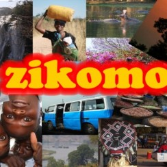 7 Jahre Zikomo